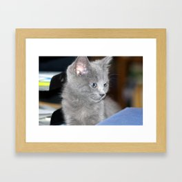 Young Hodge Framed Art Print