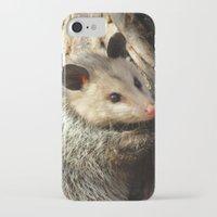 alabama iPhone & iPod Cases featuring Alabama Possum by Chuck Buckner