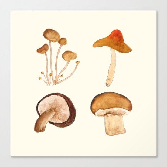 mushroom watercolor painting Canvas Print