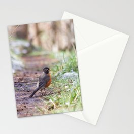 Robin in the Path Stationery Cards
