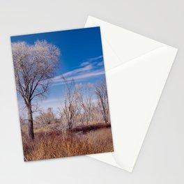 Winter Woods at Pahranagat National Wildlife Refuge, NV Stationery Cards