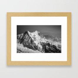 Pandim in Black and white Framed Art Print