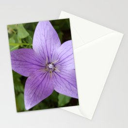 Purple Balloon Stationery Cards