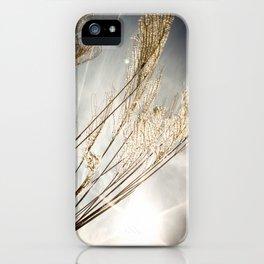 sunlight in the field iPhone Case