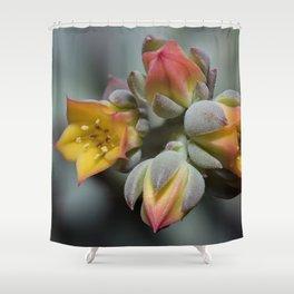 Succulent Blossom Shower Curtain