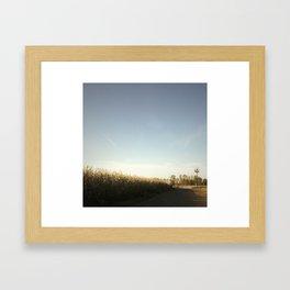 country maze Framed Art Print