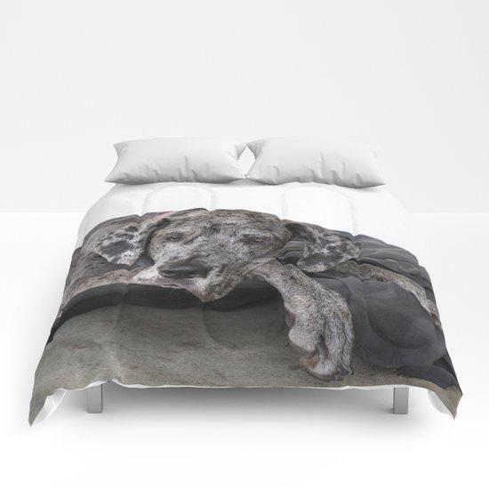 Great Dane waiting Comforters