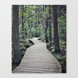 Boardwalk with natural arch Canvas Print