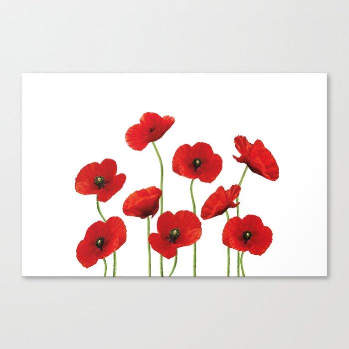 Poppies Field white background Leinwanddruck