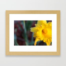 Yellow, it's Spring calling! Framed Art Print