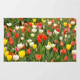 Plenty tulips mix grow in garden Rug
