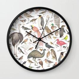 Birds of the world Wall Clock