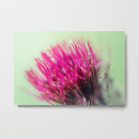 Star Burst Metal Print
