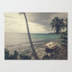 Washed Up (Color) Canvas Print