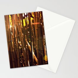Autumn bamboo forest #photography #autumn Stationery Cards