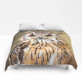 Indian Eagle Owl Comforters