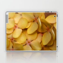 Flame of the Woods Laptop & iPad Skin