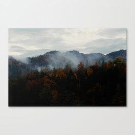 smokey forest Canvas Print