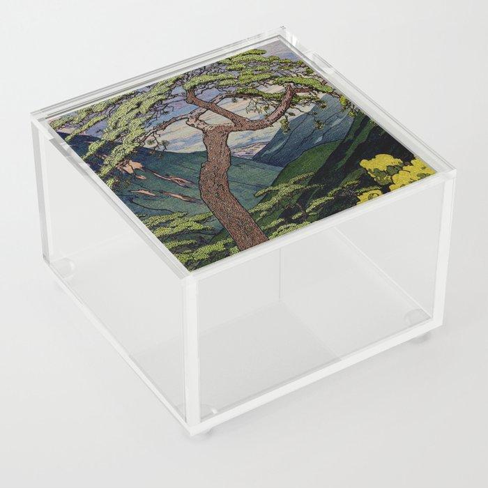 The Downwards Climbing Acrylic Box