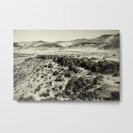 Barren Lands Metal Print