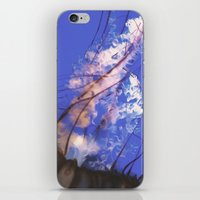 jelly fish iPhone & iPod Skins featuring Jelly Fish  by N A N A M I
