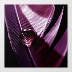 water drop IX Canvas Print
