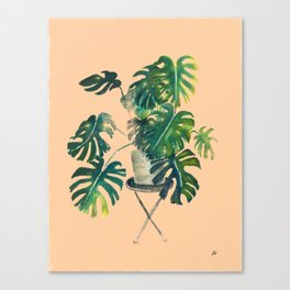 Houseplants: Philodendron Canvas Print