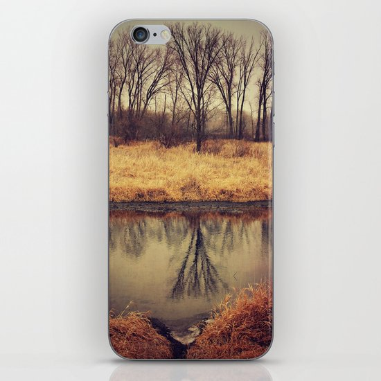 Sleeping Grass River iPhone & iPod Skin