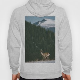 Hello spring! - Landscape and Nature Photography Hoody