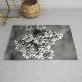 Black and White Floral Tiny Cobwebs on Flowers - Macro Close Up Rug