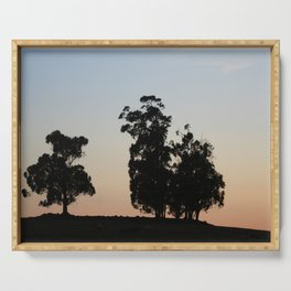 Eucalyptus trees at sunset Serving Tray