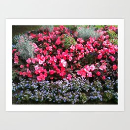 Blossom and bloom Art Print