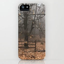 The hiden path iPhone Case