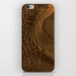 Familiar Desert 03 iPhone Skin