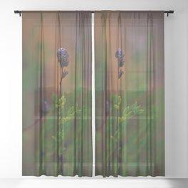 Wild flower Sheer Curtain
