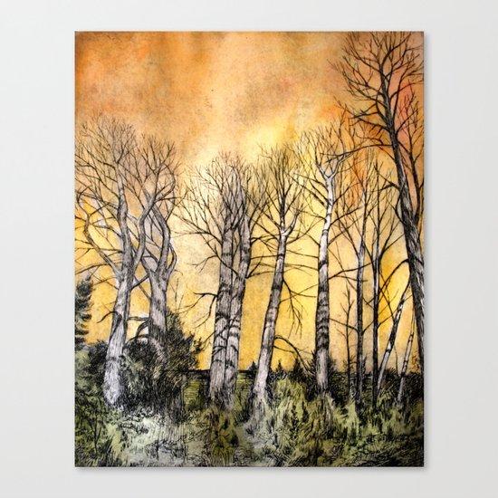 Orange Glow  Canvas Print
