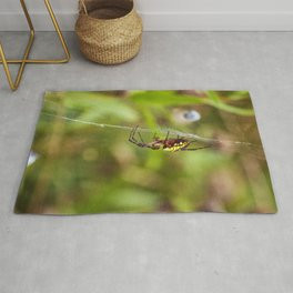 Yellow and Black Argiope Rug