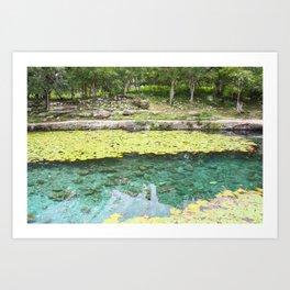 Yucatan Cenote Art Print