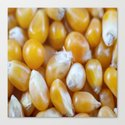 Popcorn Kernels by jlwphotography