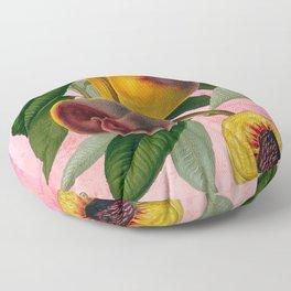 Vintage Botanical Collage, Bradford Peach Floor Pillow