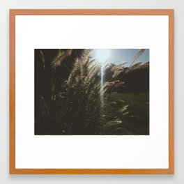 A Breeze Framed Art Print