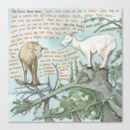 Goats 1 Canvas Print