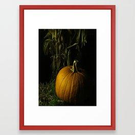 Pumpkin, Pumpkin Big And Round Framed Art Print