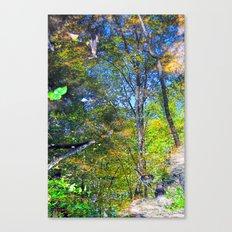 Nature Reflecting Nature II Canvas Print