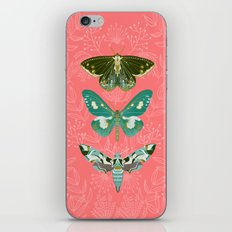Lepidoptery No. 5 by Andrea Lauren  iPhone & iPod Skin