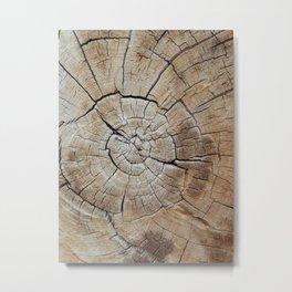 Tree rings of time Metal Print