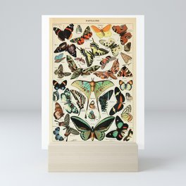 Papillon I Vintage French Butterfly Charts by Adolphe Millot Mini Art Print