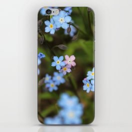 Pink and Blue Forget-Me-Nots iPhone Skin