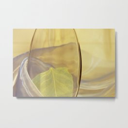 Transparency Metal Print