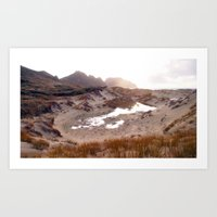 Northwest Circuit, Stewart Island, New Zealand (P7130382) Art Print